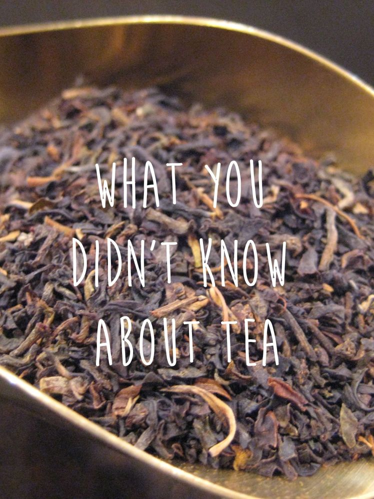 What you didnt know about tea